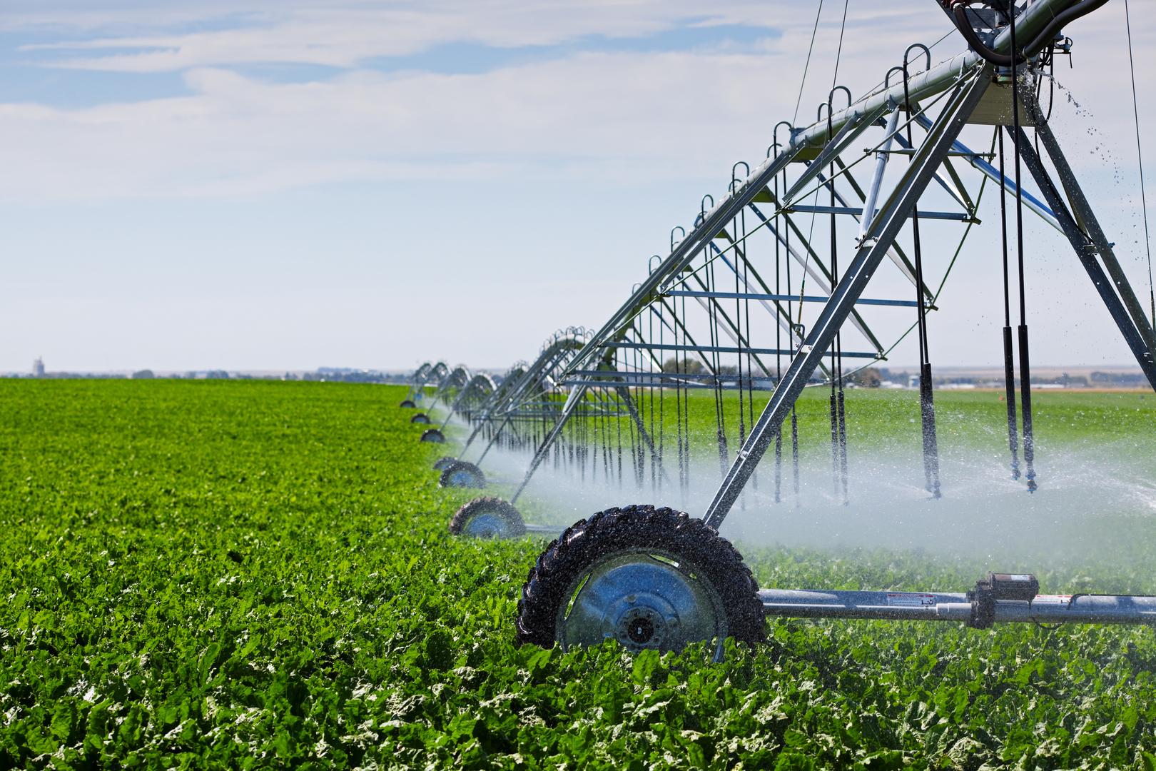 Через 1,5 года площадь орошаемых земель в Казахстане планируется увеличить до 2 млн га